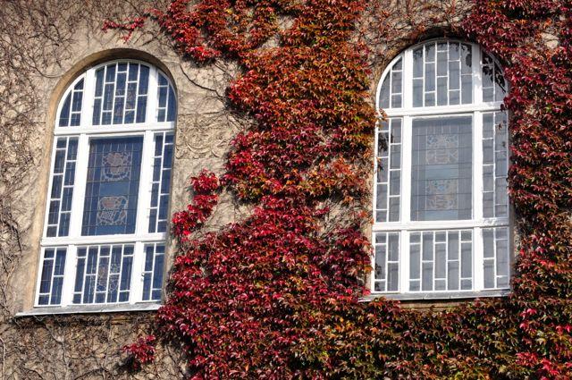 okna-witraże